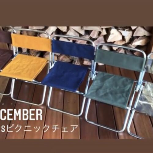 【DAIS】ピクニックチェア(カラー:全10色)